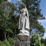Dẫn Lễ Và Lời Nguyện –Lễ Đức Mẹ Vô Nhiễm Nguyên Tội