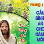 Đừng Lo Lắng Gì Cả (25.01.2020 – Thứ Bảy – MỒNG MỘT TẾT: Lễ Tân Niên)
