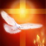 Chúa Thánh Thần Hay Chủ Nghĩa Độc Tài?(18.02.2020 – Thứ Ba Tuần 6 TN)