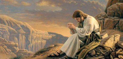 Cử Hành 24 Giờ Cho Chúa (Ngày 20-21/03/2020)