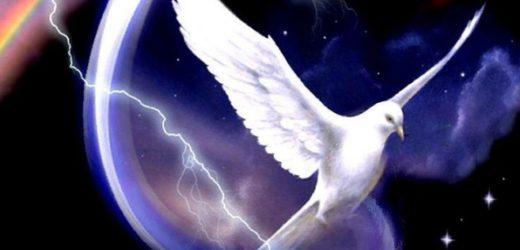 Giáo Luật Và Nhiệm Vụ Thánh Hóa