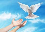 Thiện Lương Và Quân Tử: Quà Tặng Của Chúa Thánh Thần…