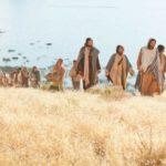 Hãy Đến Chiên Lạc Nhà Israel (08.7.2020 – Thứ Tư Tuần 14 Thường Niên)