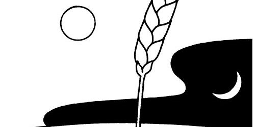 Sợi Chỉ Đỏ – CN XI Thường Niên  – Năm B (CN.13.06.2021)